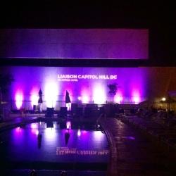 Liason Hotel-- the oasis