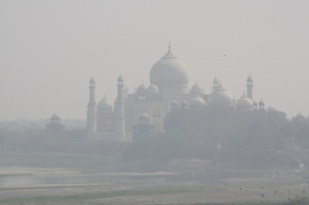 Image from Agra Fort.