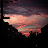 photo-23